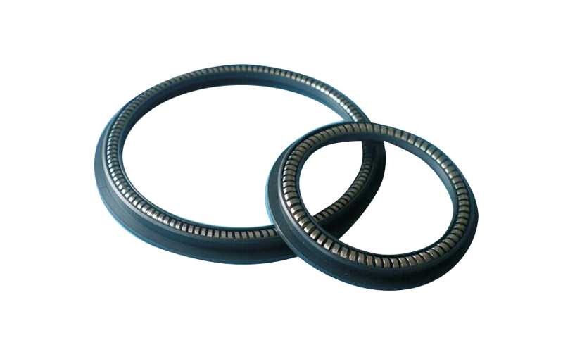 Spring Energized PTW Seal