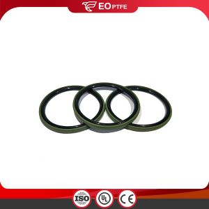 Hydraulic Bronze Piston GSD Seals