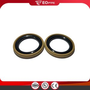 Hydraulic Step Ring Piston GSD Seals