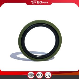 Low Friction Piston GSF Seal