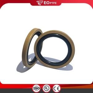 PTFE Bronze Piston GSF Seal