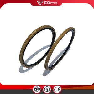 PTFE Rotary Hole GNS Seal