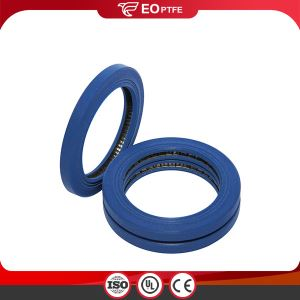 Spring Energized PTC Seal