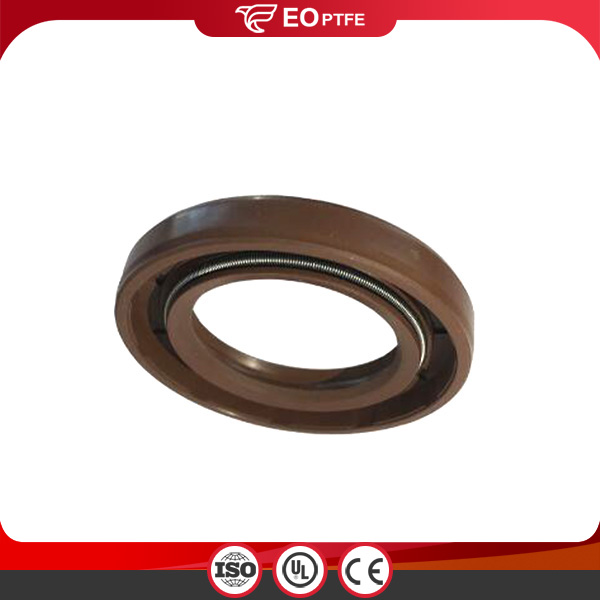 Spring Energized PTFE Shaft Seal